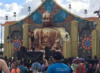 EDC Orlando 2015 Neon Garden