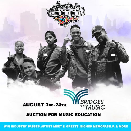 Electric Zoo 2017 Charity Auction