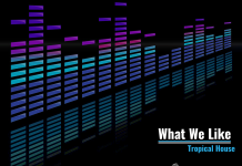 What We Like Tropical House