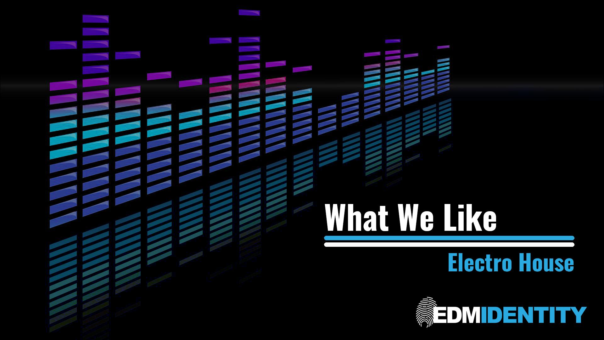 What We Like Electro House Edm Identity