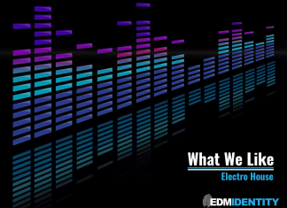 What We Like - Electro House (4x3)