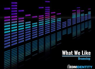 What We Like Drumstep