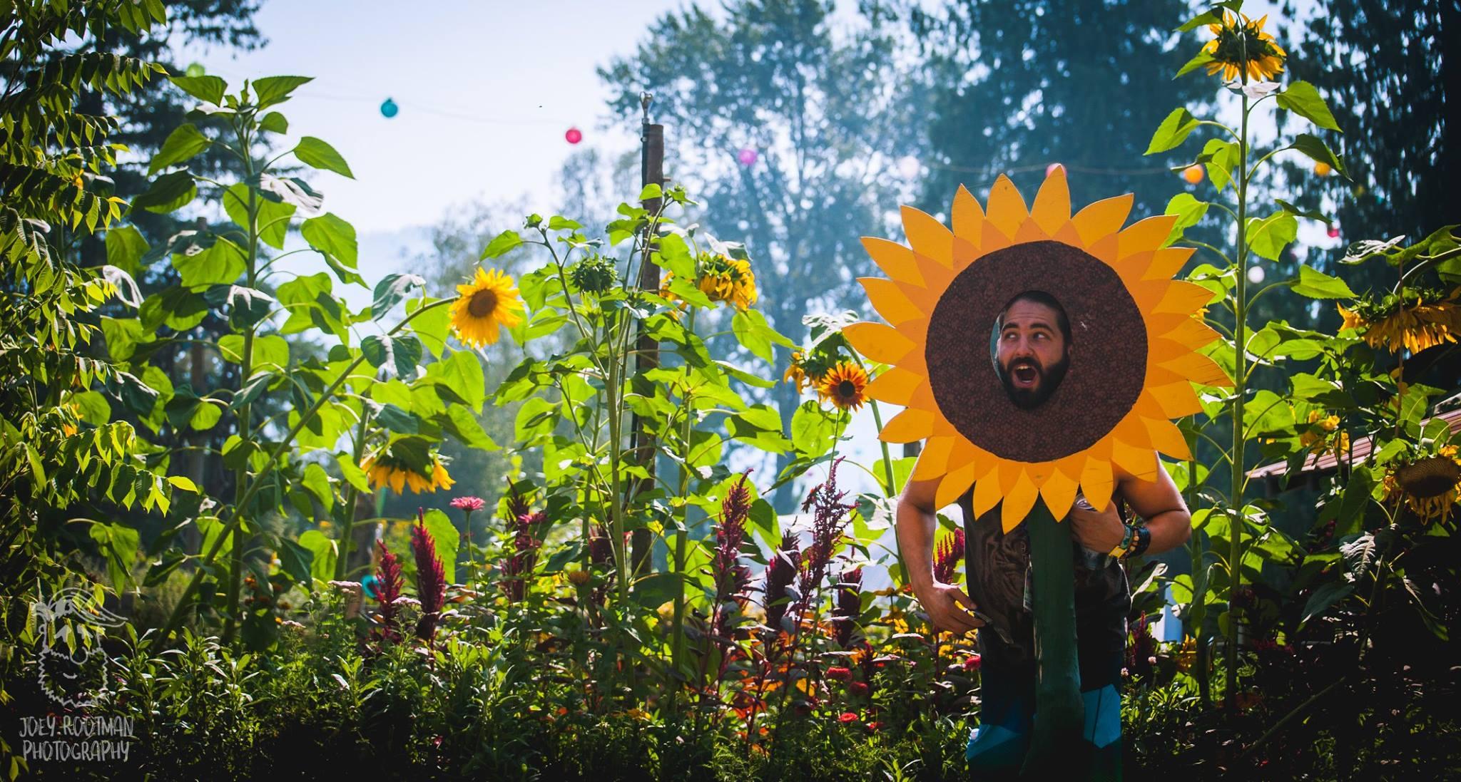 Shambhala 2018 Sunflower Guy Joey Rootman