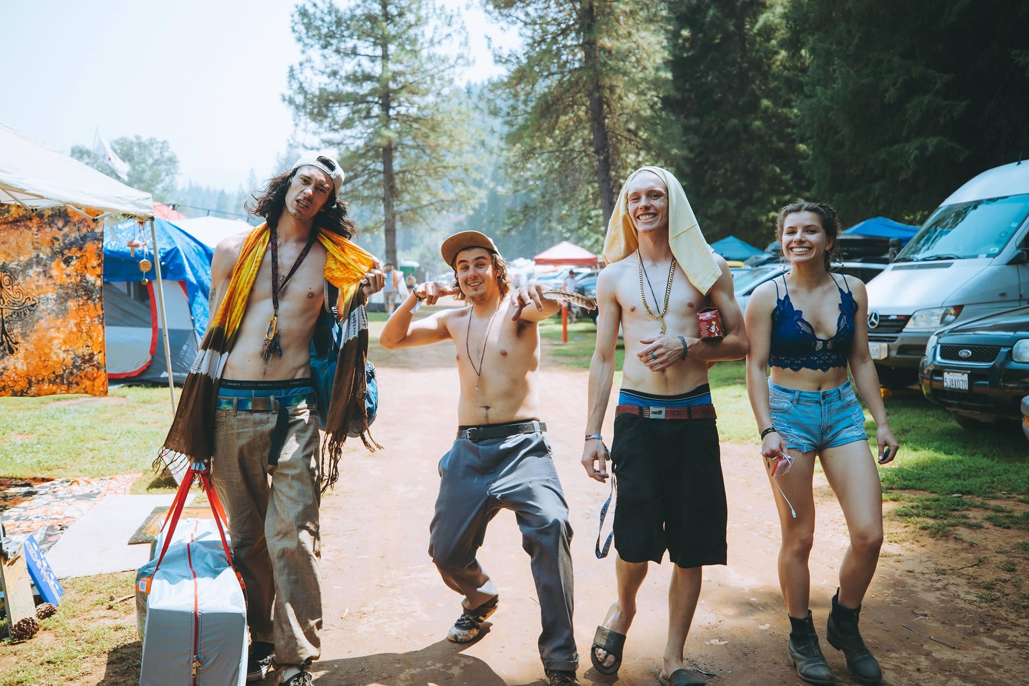 Organic Fest 2018