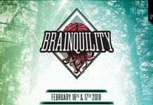 Brainquility Music Festival 2019 Banner