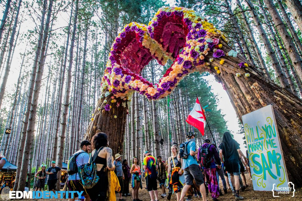 Electric Forest 2019 Proposal