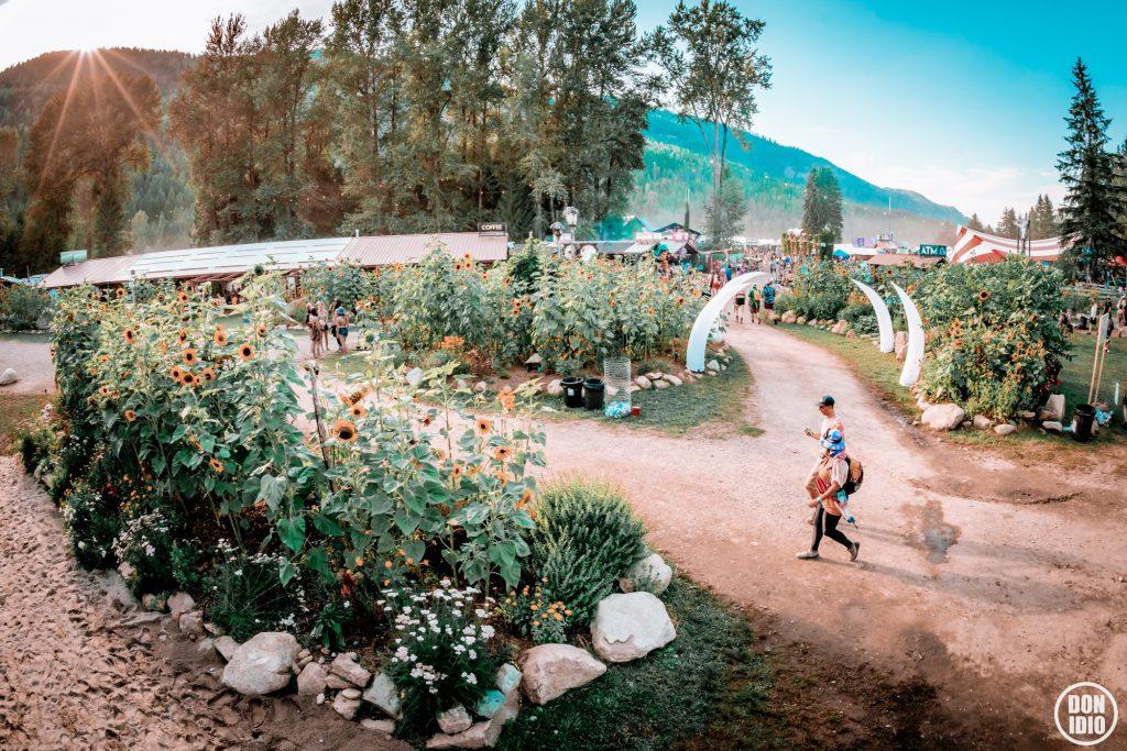 Shambhala 2019 Sunflower Garden