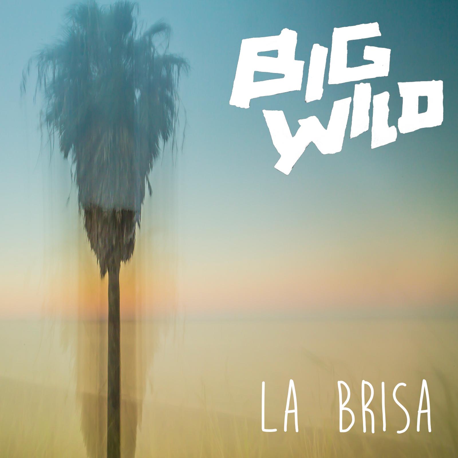 Big Wild La Brisa
