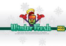 Holy Molé -Winter Fresh Compilation Vol. 1