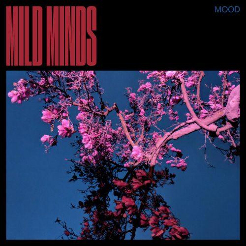 MOOD Mild Minds