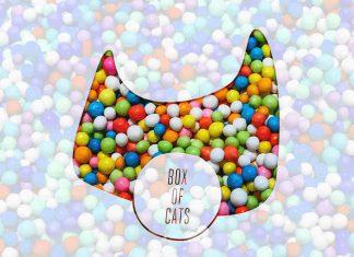 Box Of Cats Litterbox 08