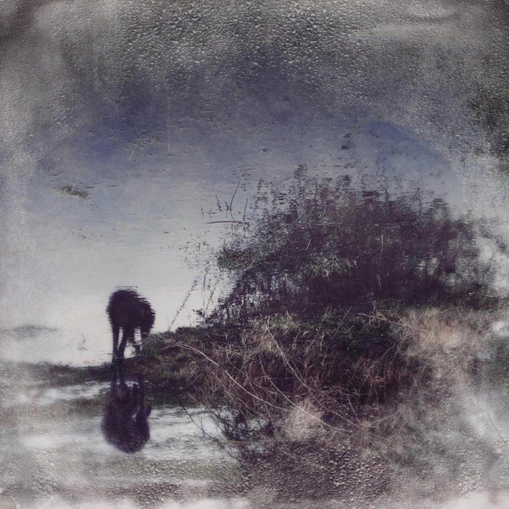 Simon Posford Flux & Contemplation Album Cover