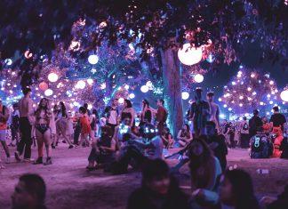 Festival Crowd Shot sexual assault