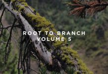 This Never Happened Root To Branch Volume 5