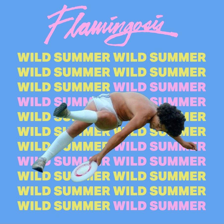 FLAMINGOSIS Wild Summer