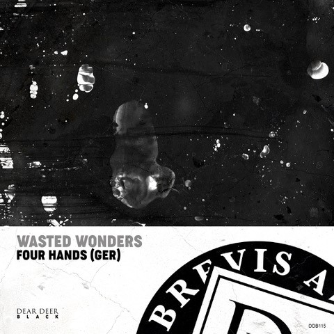 Four Hands Wasted Wonders
