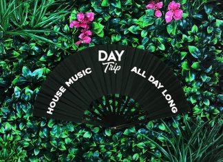 Day Trip Fan
