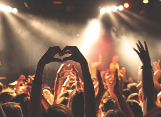 Concert Crowd PLUR Heart