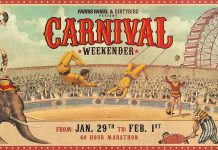 Farris Wheel Dirtybird Carnival Weekender