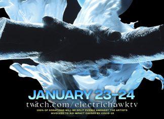 Electric Hawk In Unity Virtual Music Festival