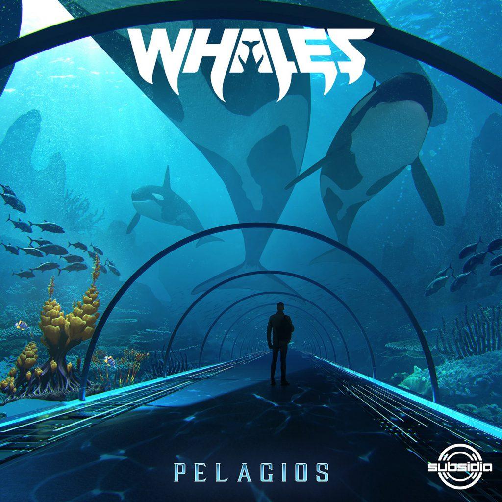 Whales - Pelagios