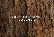 This Never Happened Root to Branch Vol. 7