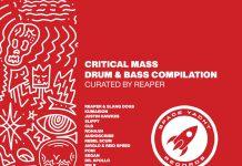 Space Yacht Critical Mass Vol. 1